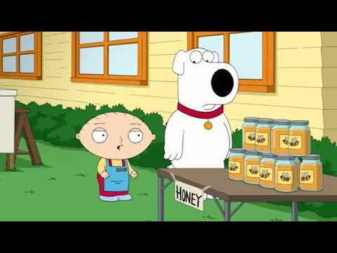 Family Guy Full Episodes - Family Guy S15E11 Gronkowsbees P03
